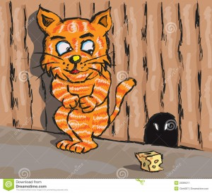http://www.dreamstime.com/stock-image-cat-rat-image22089211
